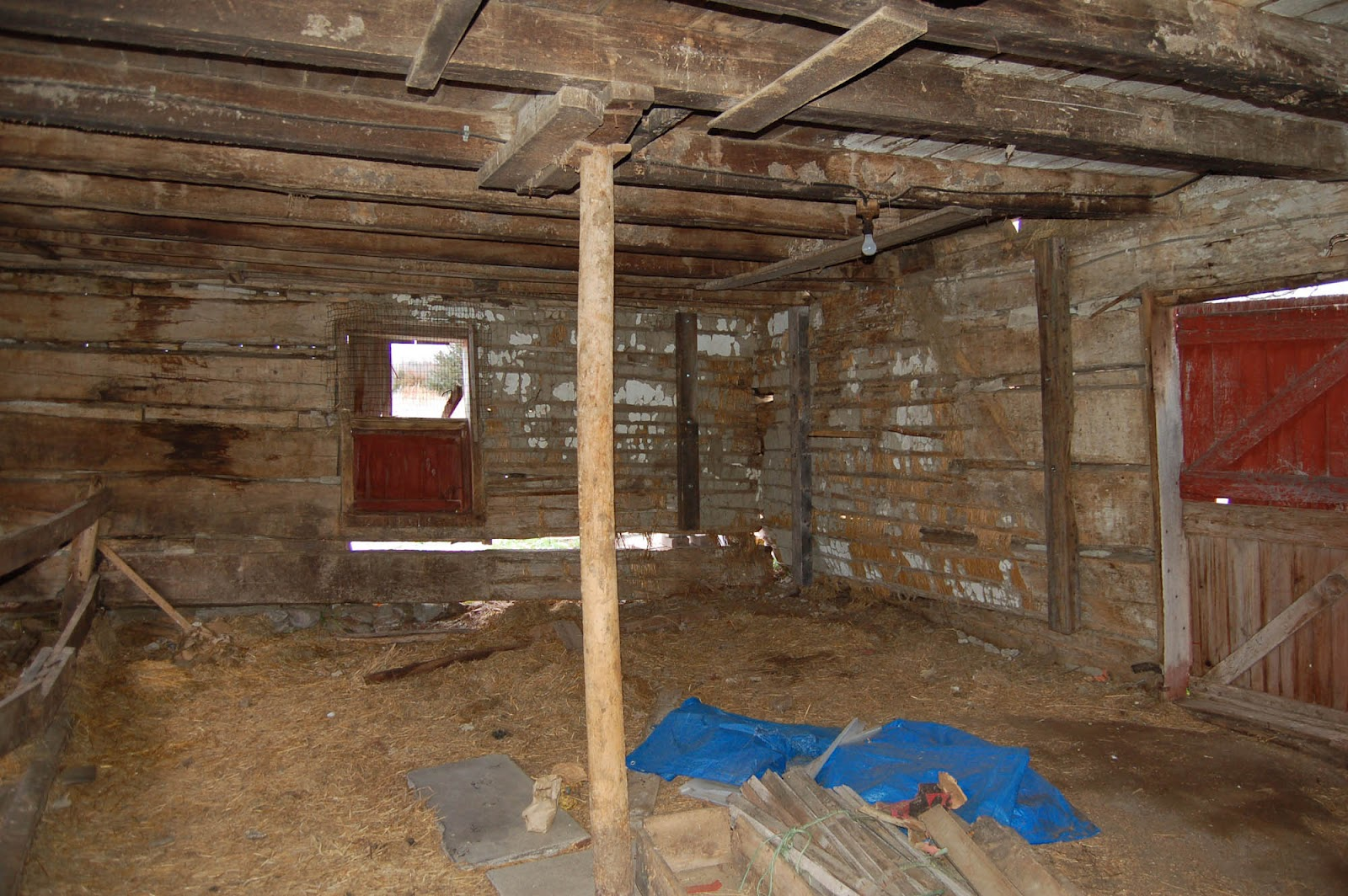 Log Cabin Interior Walls