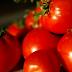 Las 4 Enfermedades Que El Tomate Es Capaz De Combatir