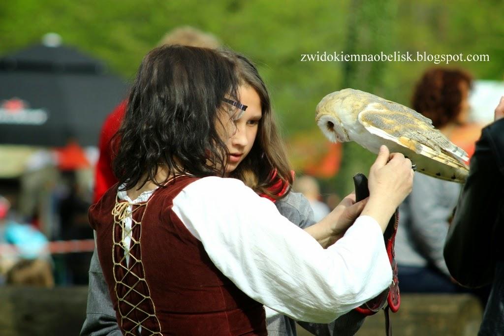 Hej orły, sokoły...pokazy sokolnicze na Majówce Rycerskiej w Zamku Kliczków