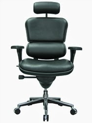 Eurotech Seating Ergohuman Office Chair