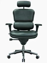 Eurotech Seating Ergohuman Office Chair