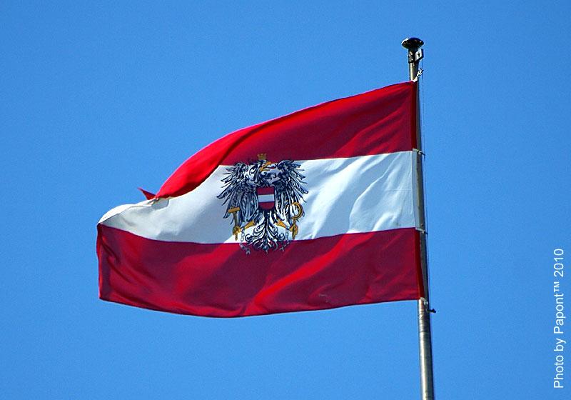 флаг вены