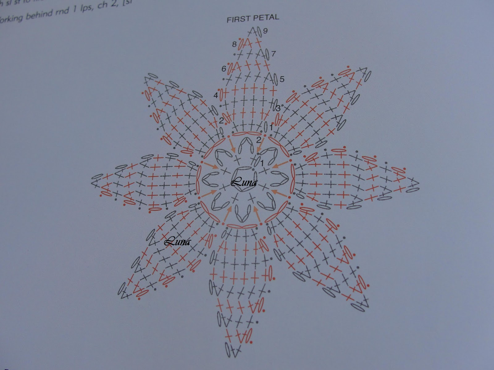 Poinsettia Crochet Patterns / Pascuas y su Patron