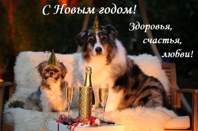 *С Новым годом!*