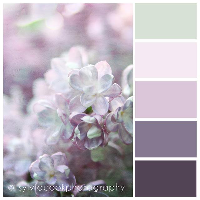 Inspirations loving color palettes - Lilac color paint bedroom ...