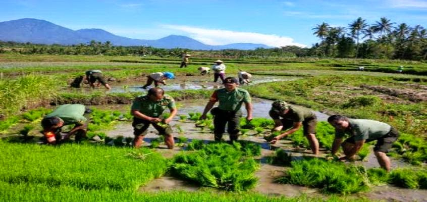 TNI Dukung Terwujudnya Kedaulatan Pangan Indonesia