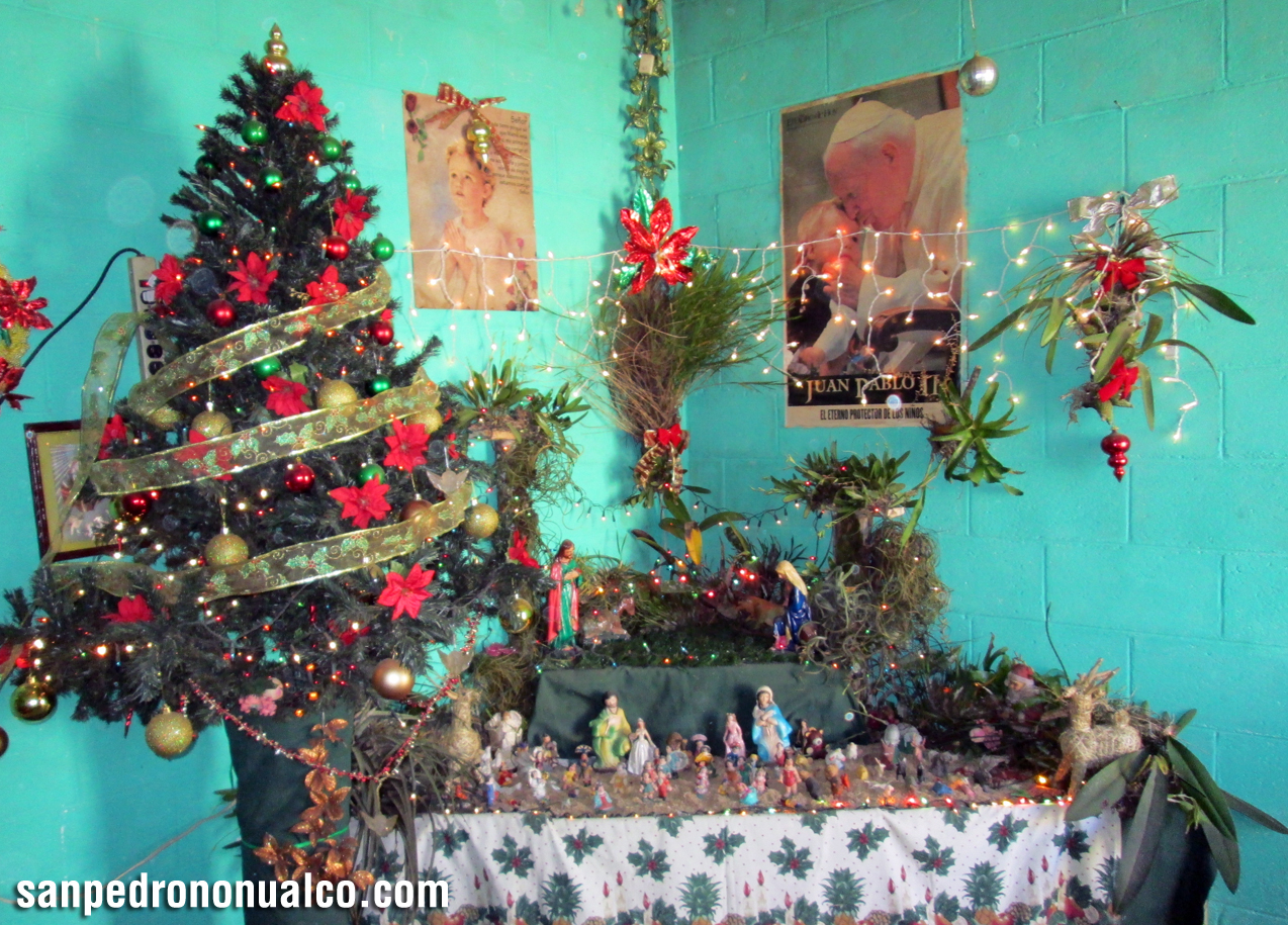 San pedro nonualco sitio web oficial de los sampedranos nacimientos de navidad - Nacimiento para navidad ...