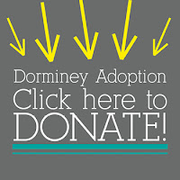 HOW TO DONATE: