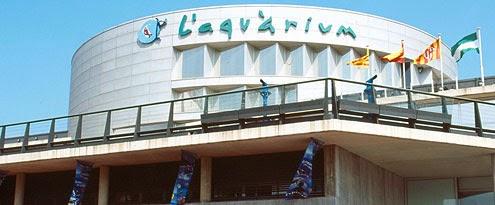 Viajar a barcelona aquarium de barcelona for Aquarium de barcelona