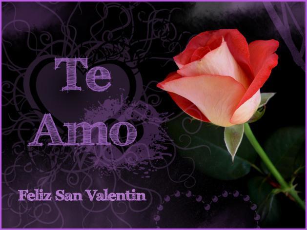 Imagen con flor y frase te amo para san valentin