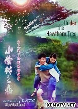 Chuyện Tình Dưới Cây Táo Gai - The Love Under The Hawthorn Tree
