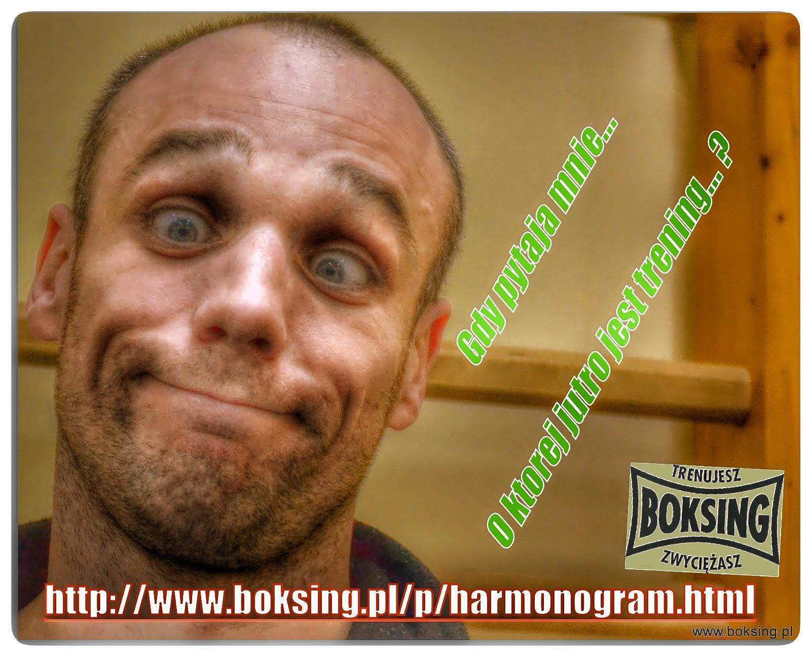 Bogumił Połoński, harmonogram, SKF Boksing Zielona Góra, treningi, sport, boks, kickboxing, muay thai