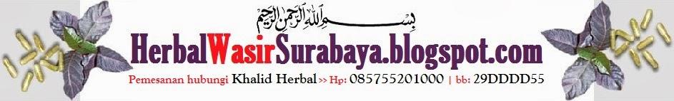 Herbal Wasir Surabaya | 085755201000 | jual obat herbal wasir Surabaya | daun ungu Surabaya