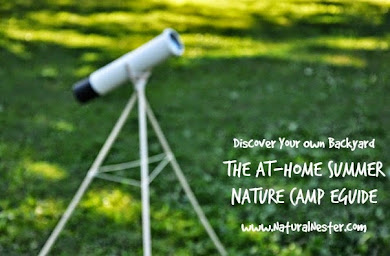 At-Home Summer Nature Camp