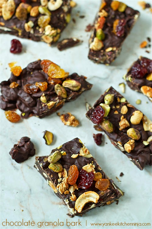 chocolate granola bark with dried fruit and sea salt