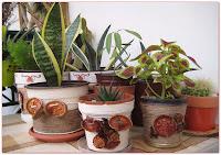 Twine Wraped Bottle, Vase, Jar , Flowerpot ... [ EN/SRB]  ili Ukrasite staklene boce  i sakcije kanapom.