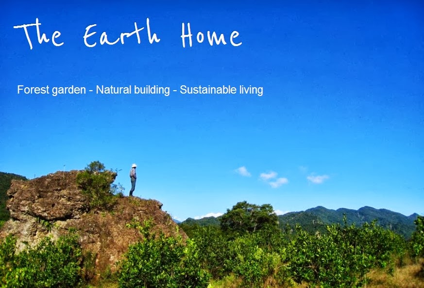 The Earth Home