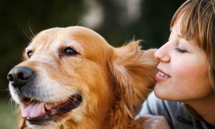 Can Pets Improve Your Love Life - girl woman dog raise cuddle animal