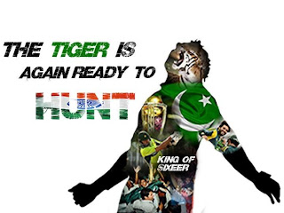 afridi tiger ready to hunt indian jackals