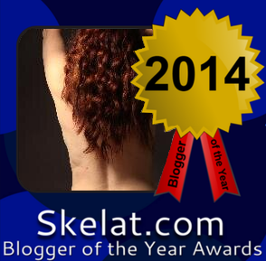 Blogger of the Year 2014