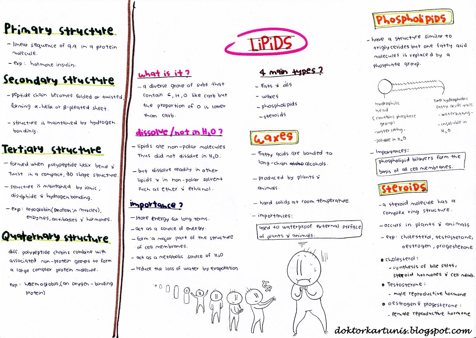 spm biology Peperiksaan sebenar spm tahun 2012 lembaga peperiksaan, kementerian pelajaran malaysia, putrajaya biologi kertas 2, 3 (biology paper 2, 3 spm year 2012.