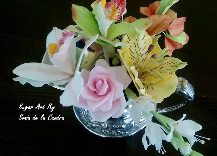 Imagenes De Rosas Y Orquideas - Fotos de flores hermosas y bellas rosas violetas margaritas
