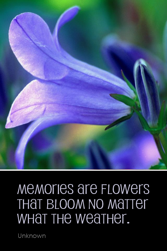 visual quote - image quotation for HAPPINESS - Memories are flowers that bloom no matter what the weather. - Unknown