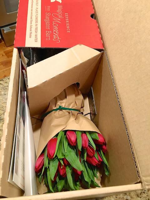 #IloveStargazerBarn Sensory Seduction - package 2