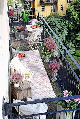 wrzosy na balkonie