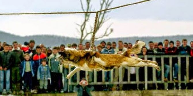 Tradisi Kejam yang Menyika Binatang