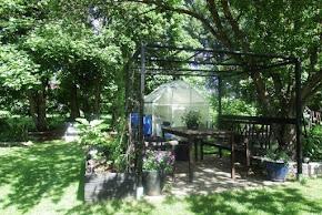 Min trädgård.