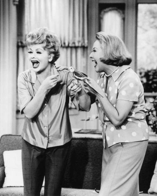 A Blog about Lucille Ball: 30 Days of Lucille Ball-- Day 6