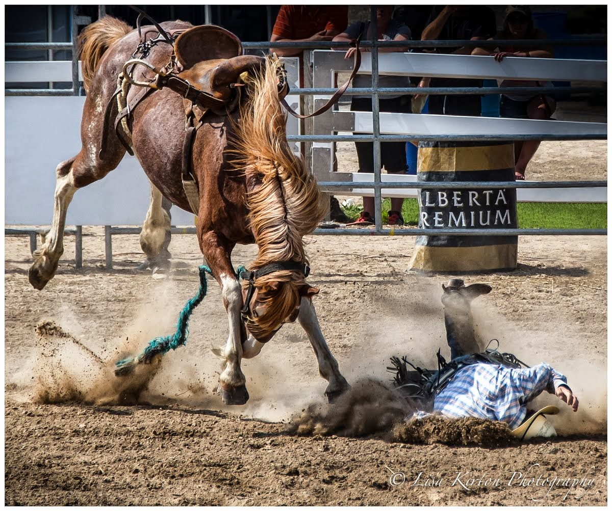 Eat Dirt Cowboy