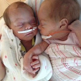VP Babies