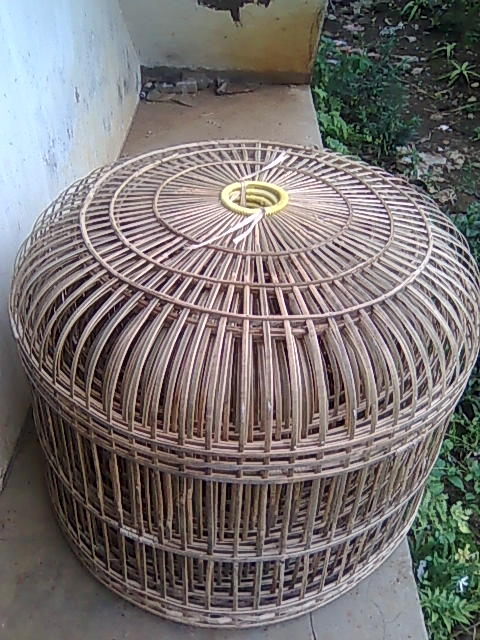 Membuat Kandang ayam dan Kerajinan dari Bambu