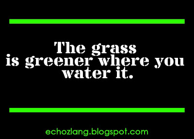 The grass is greener when you water it