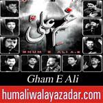 http://www.humaliwalayazadar.com/2015/07/gham-e-ali-ramzan-noha-album-2015.html