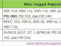 Rekomendasi Klon Bibit Karet Unggul Periode 2010-2014