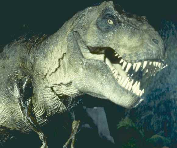 Most Amazing Extinct Land Animals Tyrannosaurus Rex