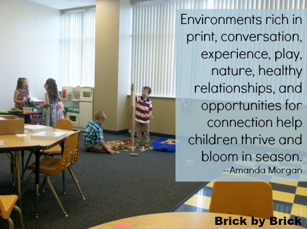 Learning Environment (Brick by Brick)