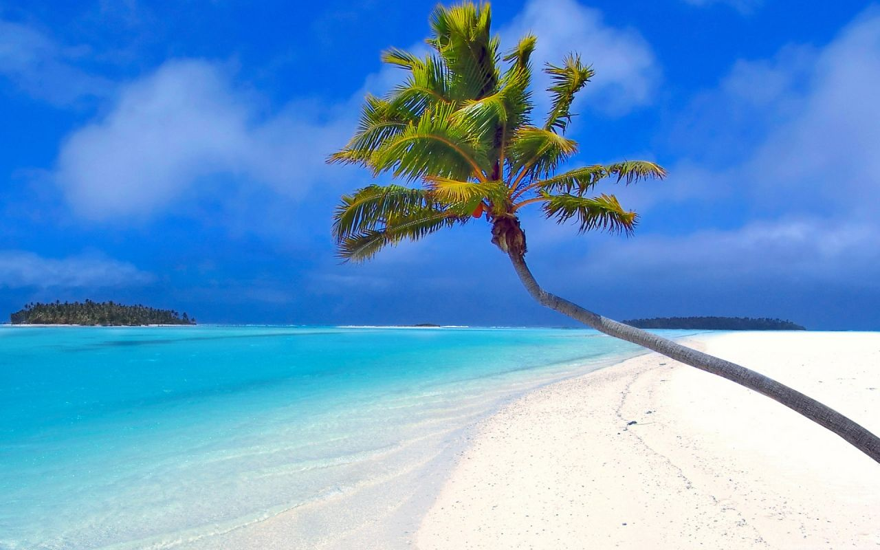 Playa caribe a wallpapers y fondos de pantalla gratis - Playa wallpaper ...