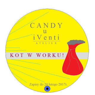 Candy Kot w worku