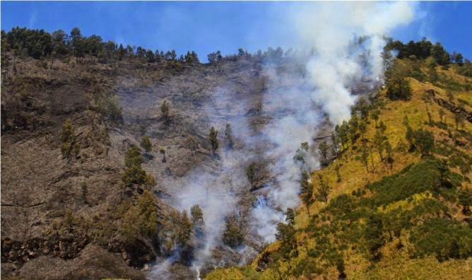 Foto Savana Gunung Bromo Terbakar