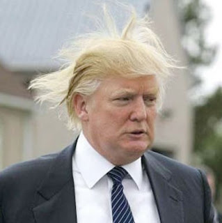 funny hair of donald trump