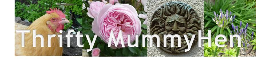 Thrifty MummyHen
