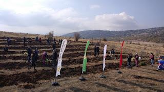Bozkır'da 11 Kasım Milli Ağaçlandırma Günü ağaç dikim etkinliği
