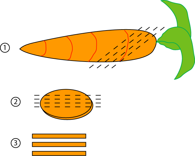 Vvisitingmexico   Images: Carrot Diagram