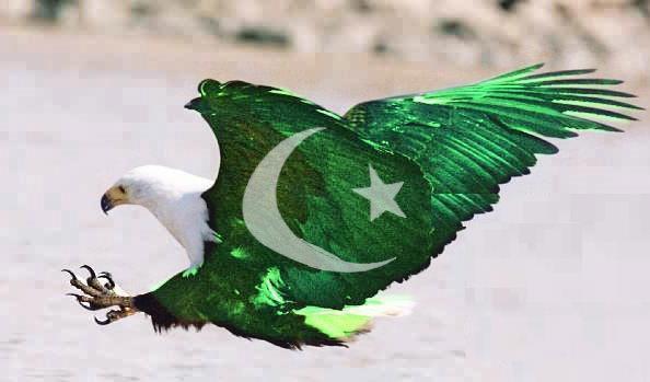 14 august pakistan wallpaper full - photo #32