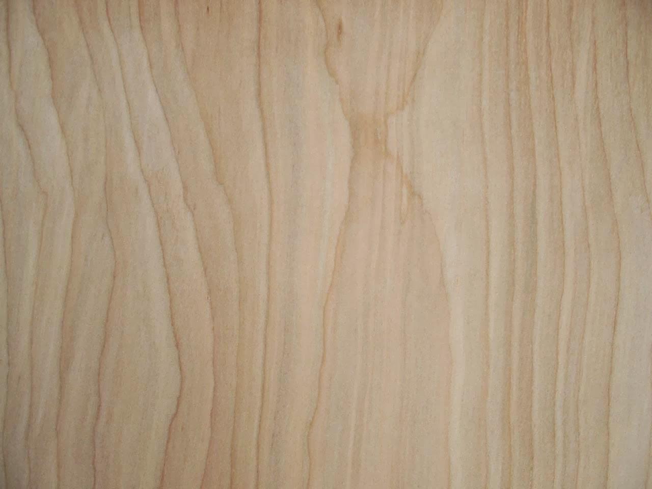Editor audiovisuals el templat nuevas texturas de madera - Madera de abedul ...