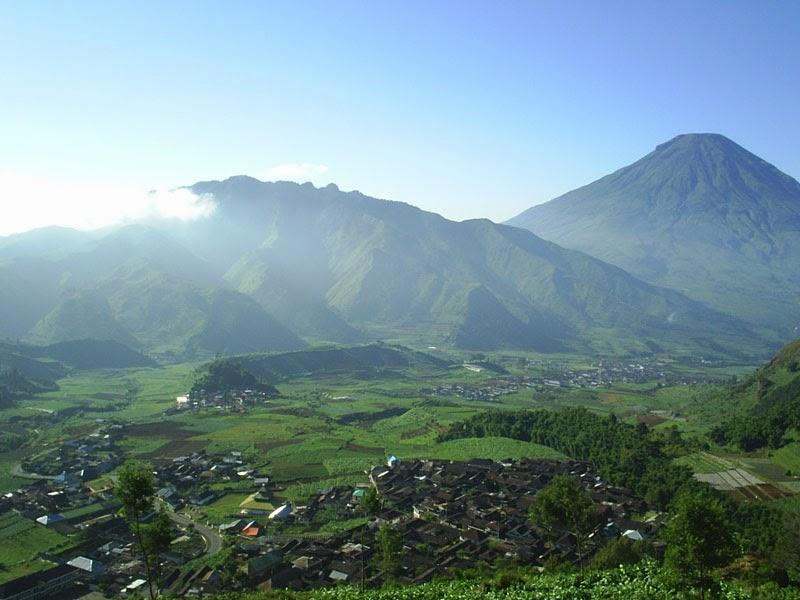 Lingkungan Dingin Pegunungan